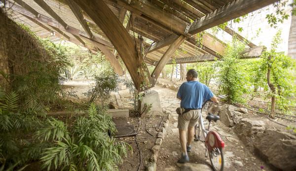 El jard n americano rebrota para los 25 a os de la expo for Jardin americano sevilla