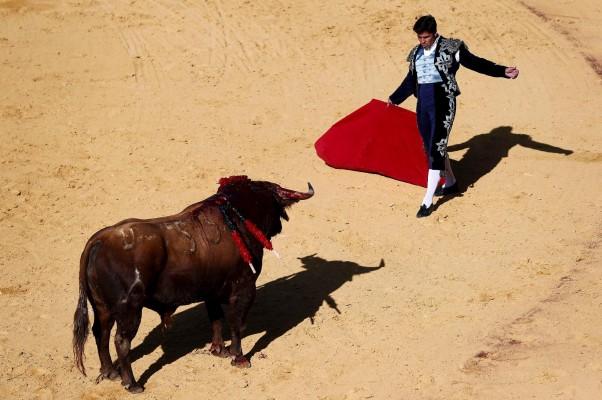 El diestro Francisco Rivera Ordoñez «Paquirri» recibe a su primer toro. / EFE