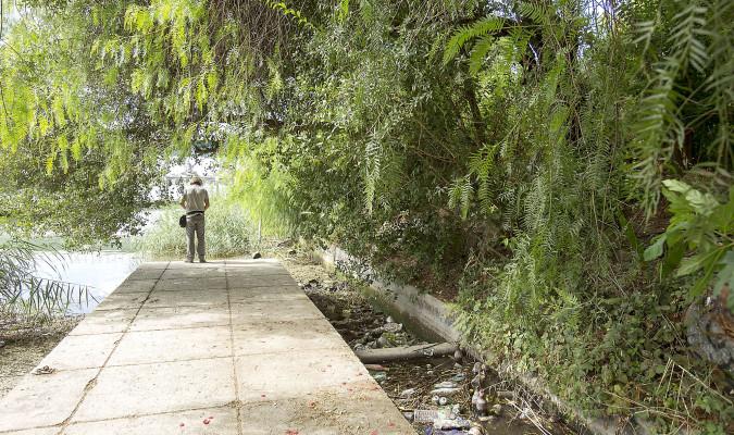Espadas hubo una directriz pol tica del equipo de zoido for Arreglar jardin abandonado