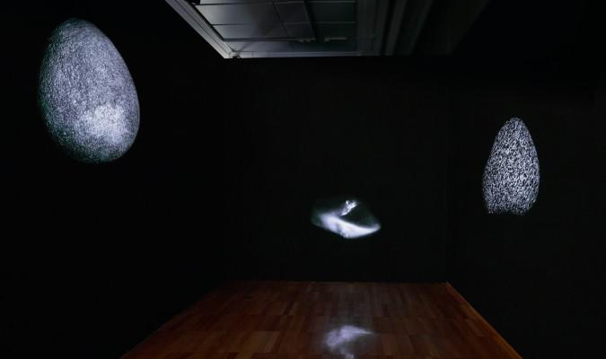 Peter campus invita a pasar al cuarto oscuro for Cuarto oscuro rayos x