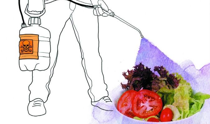 alimentos con mas hormonas
