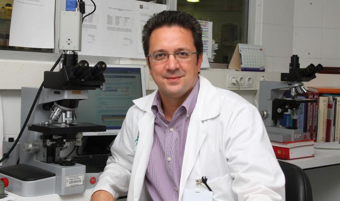 La vitamina D reduce el riesgo de rechazo tras trasplante de médula ósea