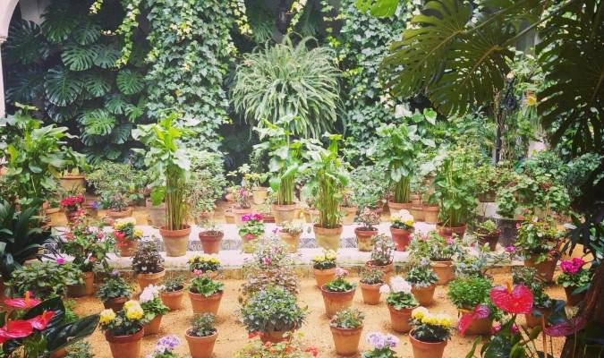 Hermosos jardines - Jardines mediterraneos fotos ...