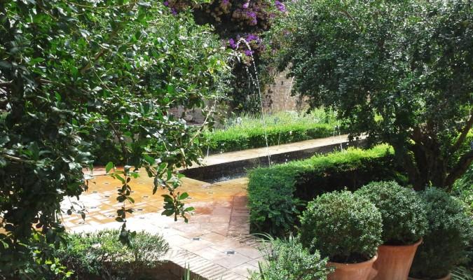 Hermosos jardines - Plantas de jardin fotos ...