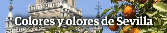 Colores y olores de Sevilla
