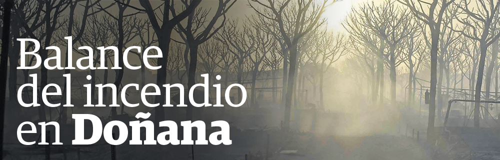 Balance del incendio en Doñana
