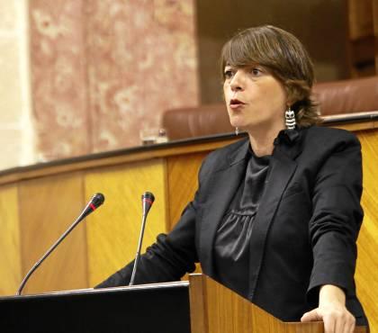 La consejera de Vivienda, Elena Cortés, comparece en el Parlamento.