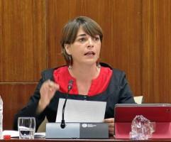 La consejera de Fomento y Vivienda, Elena Cortés, compareció ayer en comisión parlamentaria.