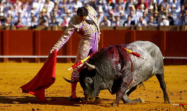El Cid. / Foto: J. M. Paisano (Atese)