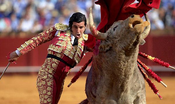 Morante de la Puebla, con su lote. / Reuters