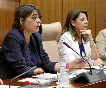 La consejera de Fomento y Vivienda, Elena Cortés, ayer, en la comisión parlamentaria.