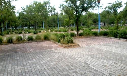 cartuja_aparcamientos