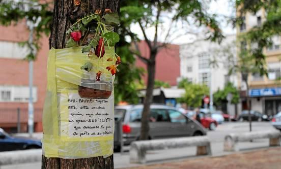El recuerdo a un hijo fallecido. (Foto: José Carlos Cruz, Atese)