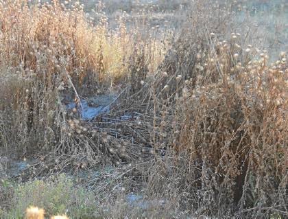 Los restos de amianto han aparecido en el cauce seco de un antiguo arroyo al que vertía Uralita. / José Carlos Cruz (Atese)