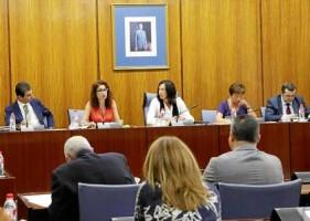 La consejera de Hacienda, María Jesús Montero, ayer en el Parlamento
