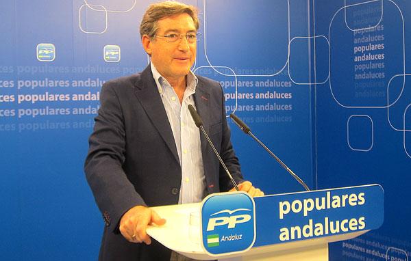 El diputado y portavoz de economía del PP-A, Rafael Carmona.