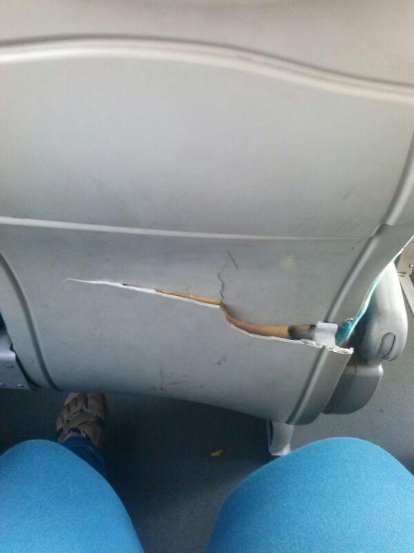 Imagen autobus linesur
