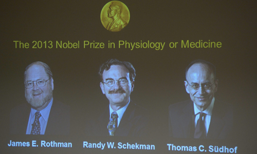 Una pantalla muestra las fotografías de los científicos estadounidenses (de izda a dcha) Randy W. Schekman y James E. Rothman .