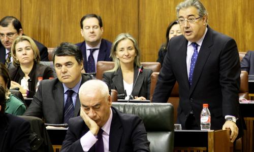 zoido-parlamento-int