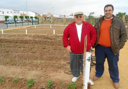 Miguel Muñoz padre, ya jubilado, y su hijo, que está en situación de desempleo, 'custodian' su huerto social.