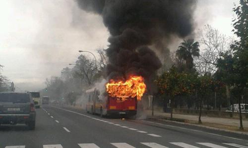 autobus ardiendo Palmera