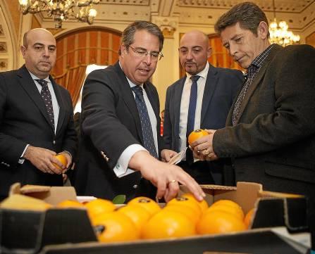 Sevilla 11/02/2014 III Jornada de la Naranja de SevillaFOTO: Pepo Herrera