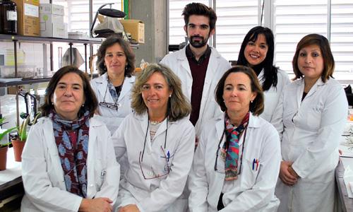 El grupo de investigadores sevillanos que han descubierto las propiedades del aceite de cannabis.