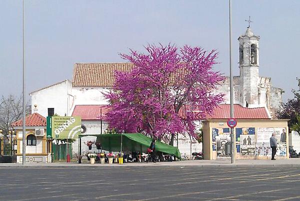 La iglesia del hospital de San Lázaro, de la época medieval, está declarada Bien de Interés Cultural desde 1964. / J.B.