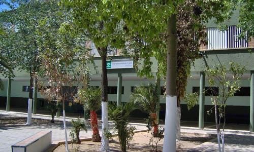 Colegio Lora Tamayo Bellavista