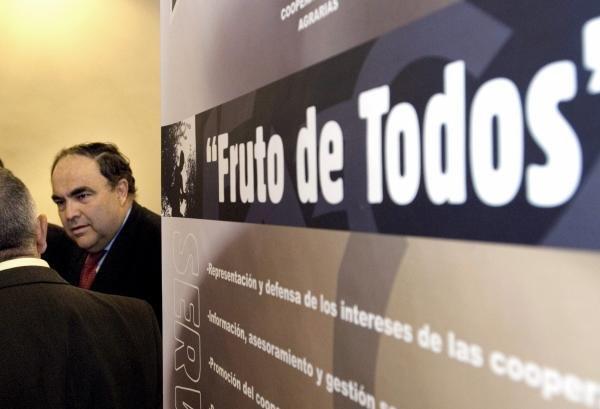 Antonio Luque, director gerente del grupo cooperativo Dcoop, en una imagen de archivo. / JOSÉ PEDROSA (EFE)