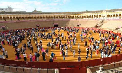 La imagen del coso de la Maestranza repleto de aficionados haciendo sus pinitos junto a sus admirados toreros llegó de orgullo a los organizadores. / Foto: Toromedia