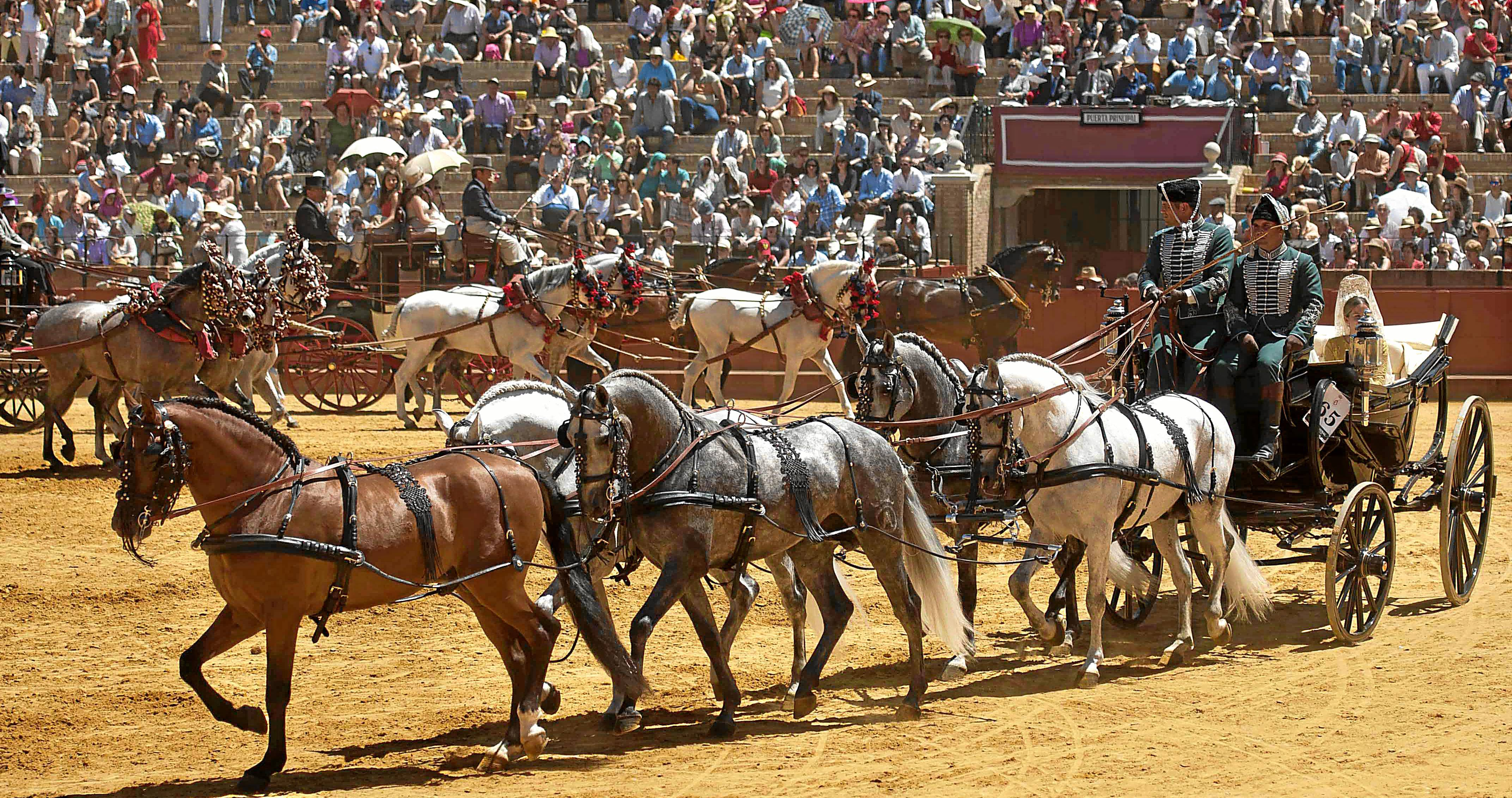 Sevilla 03 05 2014: Concurso de enganches de Sevilla.FOTO:J.M.PAISANO