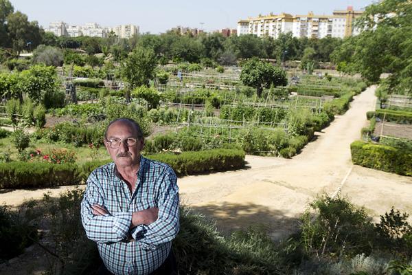 Manuel Lara, presidente de la asociación Pro Parque Educativo de Miraflores, premio Andalucía de Medio Ambiente 2014, delante de los huertos. / Pepo Herrera
