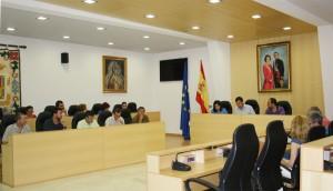 El pleno extraordinario aprobó el presupuesto de la segunda fase de construcción del centro escolar. Foto: El Correo