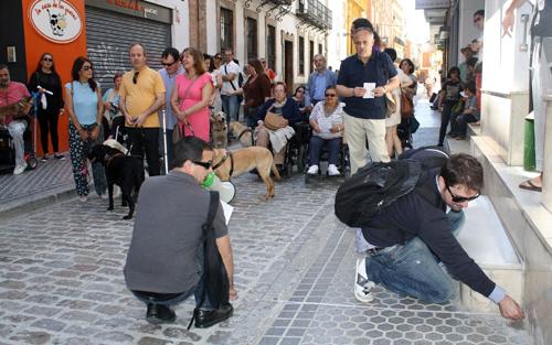 accesibilidad Sevilla IU