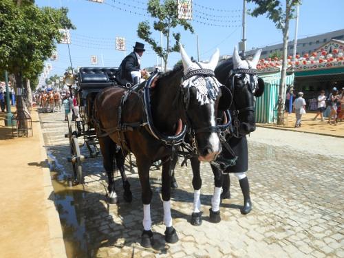 Orejeras blancas de ganchillo decoran las cabezas de algunos caballos en la Feria de Sevilla. / C.R.