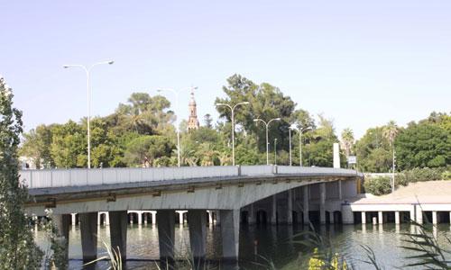 puente-remedios