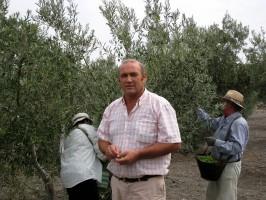 Antonio Rodríguez, responsable de COAG en Arahal, en sus olivos. Foto: María Montiel