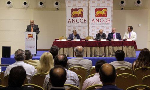 La XLII Asamblea General de la Asociación Nacional de Criadores de Caballos Españoles (Ancce). Foto: Jose Luis Montero