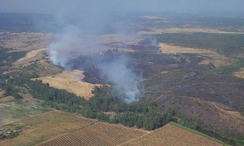 Imagen de la zona incendiada. / Infoca