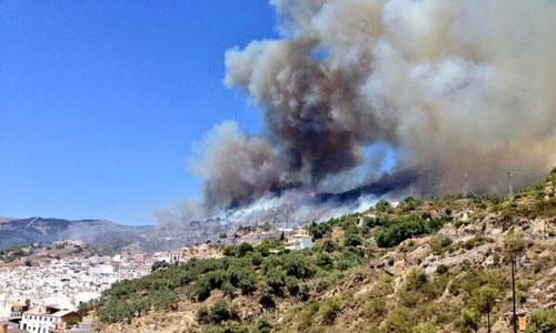 Incendio en la Sierra de Tejada, en el municipio de Cómpeta.