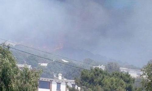 Incendio en la Sierra de Tejada, en el municipio de Cómpeta. Foto: 112 Andalucía