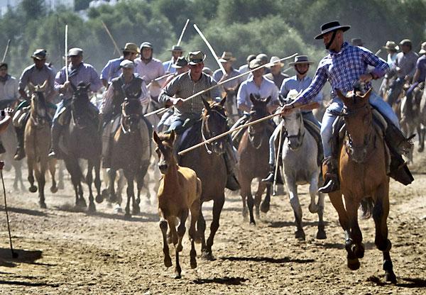 Yegüerizos conducen a la manada en la Saca de las Yeguas.. EFE/Julián Pérez