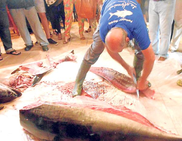 Tras el despiece, hubo una degustación del atún recién cortado.