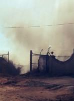 Columna de humo denso procedente del fuego en la Finca La Galbosa. Foto: E. García