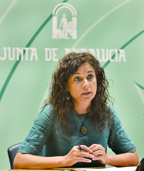 La consejera de Hacienda, María Jesús Montero, este martes en rueda de prensa para presentar el plan contra el fraude fiscal. / El Correo