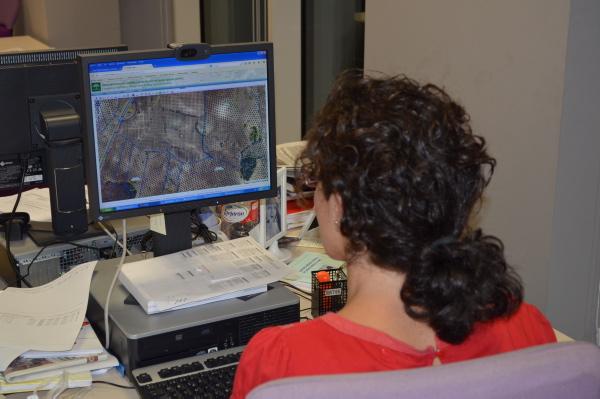 El Sigpac permite hasta contar los números de árboles que hay en cada parcela a través del visor disponible en la web de la Consejería de Agricultura. / JESÚS BARRERA