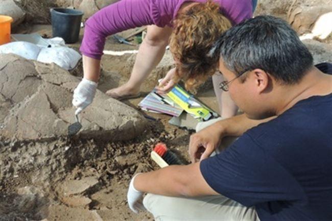 Descubren una bodega de vino de más 3.500 años. / E.P.