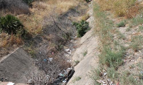 canal secoya 2