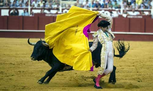 """El diestro José Tomás, en la faena a su segundo toro al que ha cortado una oreja, esta tarde en la plaza de """"La Malagueta"""" durante el séptimo festejo de la Feria de Agosto. Foto: EFE"""